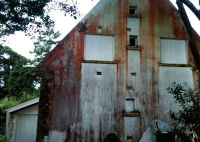 Façade maison abîmée avant traitement anti-mousse Protecttoit