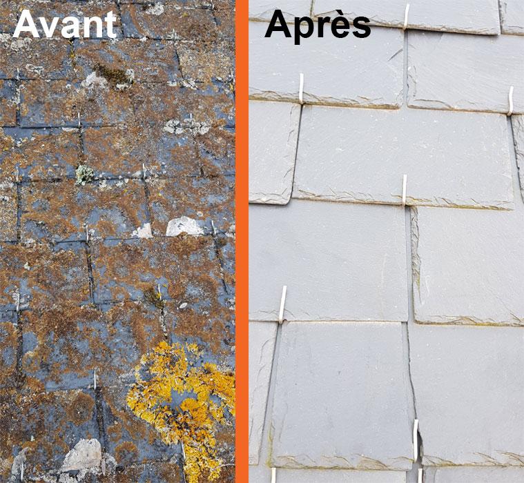 traitement anti mousse façade